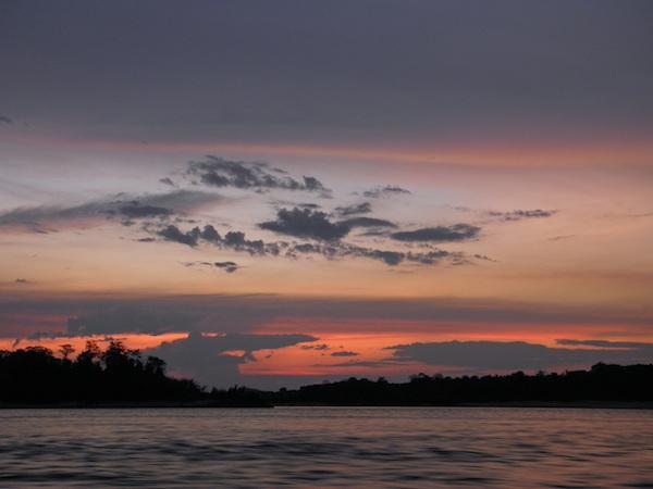 Selvas húmedas transicionales de Cumaribo, departamento de Vichada. Foto: Luis Alveart.