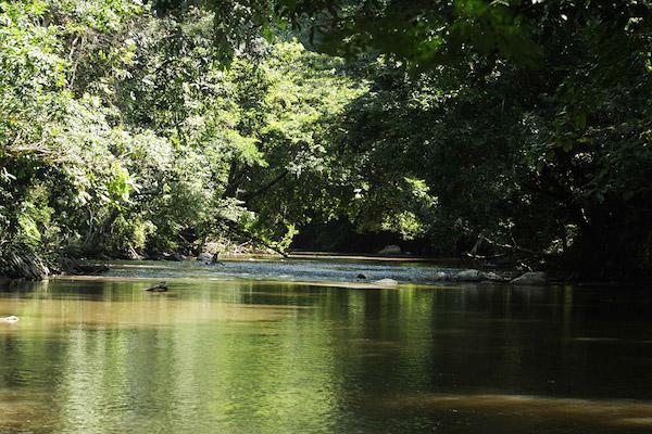 Serranía de San Lucas, ubicada entre los departamentos de Antioquia y Bolivar. Foto: Prensa Rural.