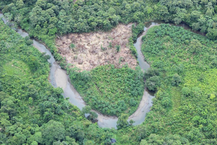 Deforestación al sur de Chocó, en Colombia. Foto: Cortesía de Fondo Acción.