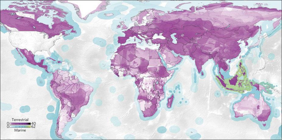 Mapa 1: Se observa la presión que ejercen los consumidores de Estados Unidos sobre ecosistemas a nivel mundial. Imagen: Morán y Kanemoto.