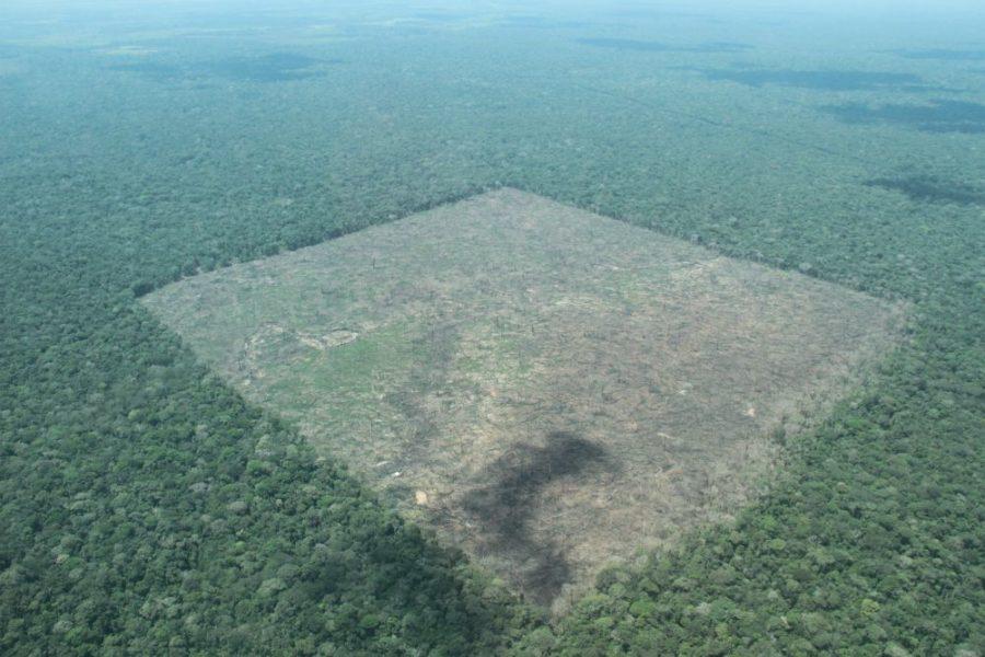 Deforestación en la Amazonía colombiana avanza. Fotografía: Sobrevuelos PNN-IDEAM-CDA-Corpoamazonia, 2016.