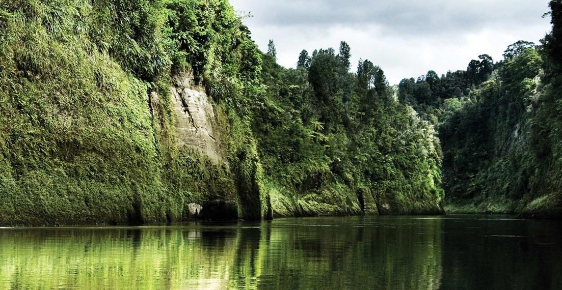 whanganui_river-1-naional-park-copia
