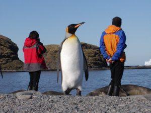 Fotografía: pinguinosc aracteristic as.blogspot.com