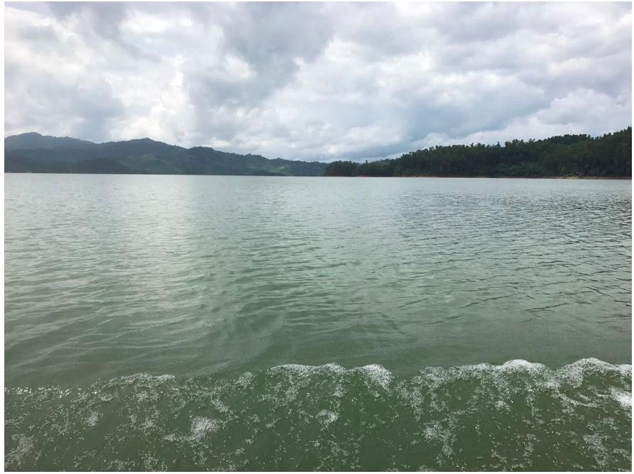 De 0 a 100, la calidad del agua del río Sinú puntea 51. Ciénaga grande del Bajo Sinú. Foto: Edineldo Lans Ceballos.