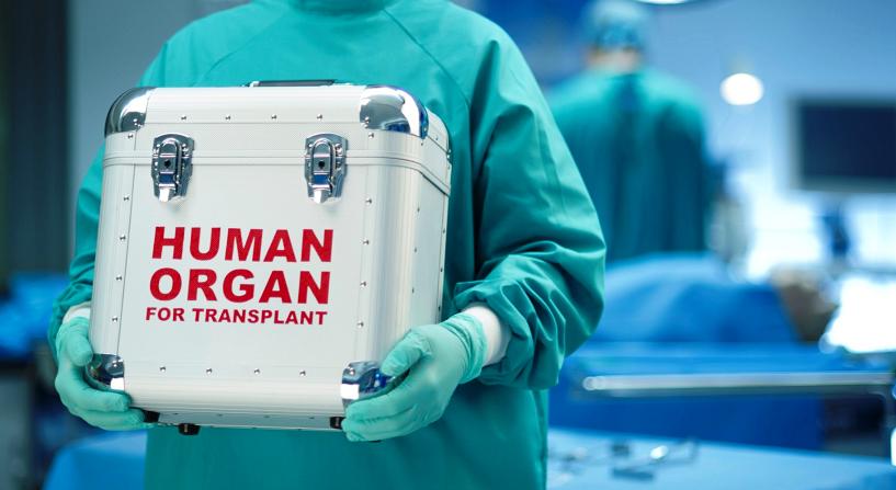 Por la donación altruista de órganos - Andrea Villate