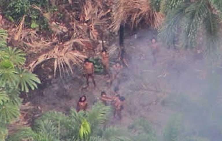Vista aérea de un grupo indígena en aislamiento en el territorio indígena Vale do Javari. Foto © FUNAI