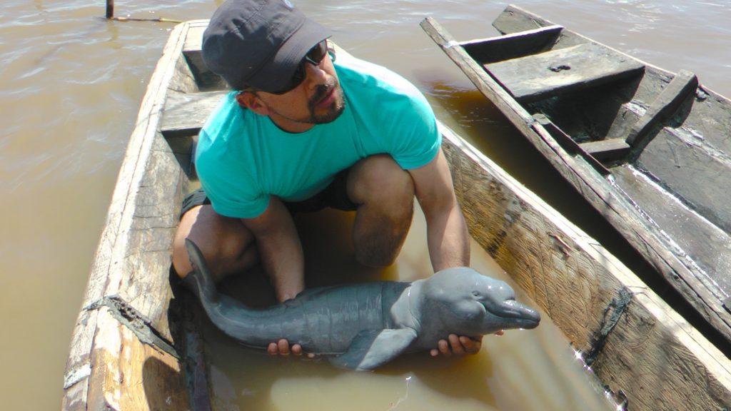 Fernando Trujillo realiza investigaciones con delfines desde hace 30 años. Foto: Kike Calvo