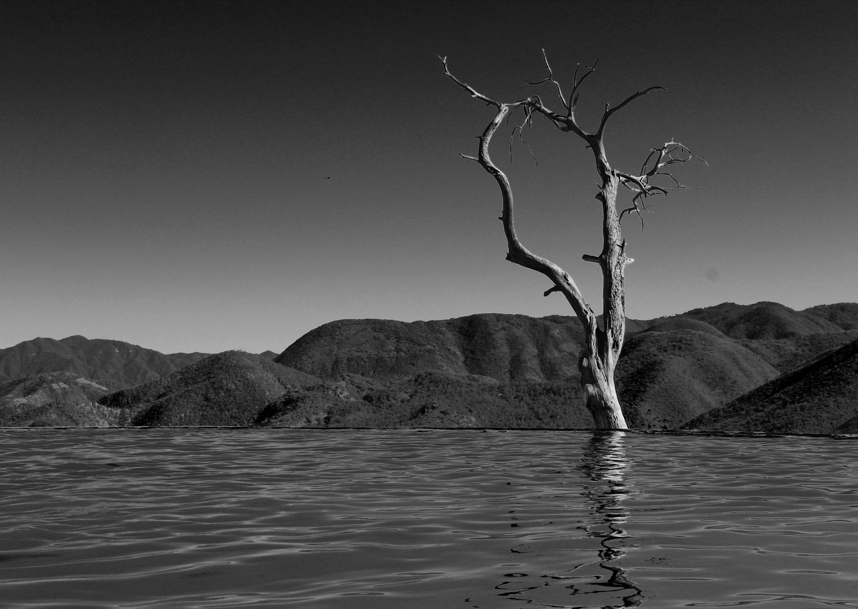 Foto: Saragapi. Hierve el Agua, Oaxaca, México.