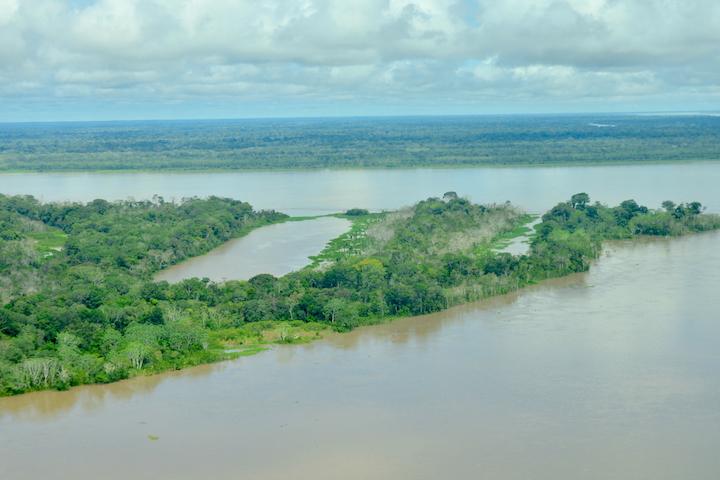 Más de 45 000 hectáreas estarán protegidas a partir de ahora. Foto: Fernando Trujillo – Fundación Omacha.