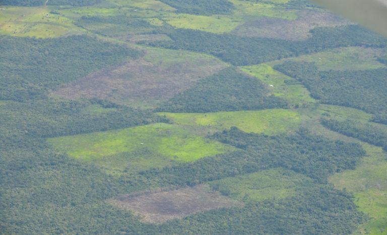 El Guaviare es uno de los departamentos más afectados por la deforestación en Colombia. Foto: Fuerza Aérea Colombiana.