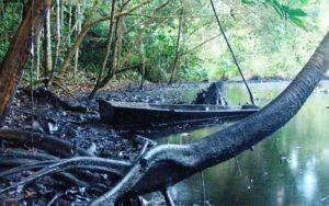 amazoniapetroleo