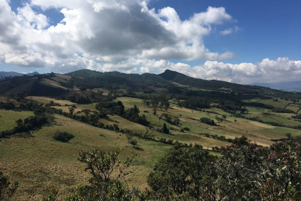 Vista panorámica de la Reserva Biológica Encenillo. Foto: Cortesía Fundación Natura.