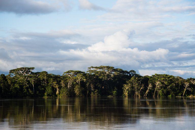 La pérdida de bosques están destruyendo la Amazonía colombiana. Foto: Juan Gabriel Soler / Amazon Conservation Team