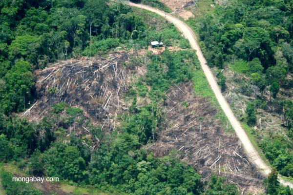 Ecuador: la deforestación alrededor de un asentamiento cerca al Río Napo en la Amazonía del país. Foto: Jeremy Hance