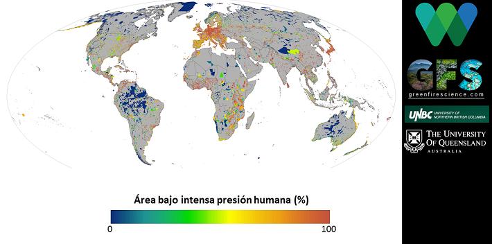 La mayoría de áreas con intensa presión humana (naranja y rojo) se ubican en Europa.