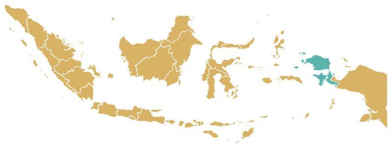 Mapa de la provincia de Papúa Occidental (turquesa). Imagen cortesía de Hayat Indriyatno/Mongabay