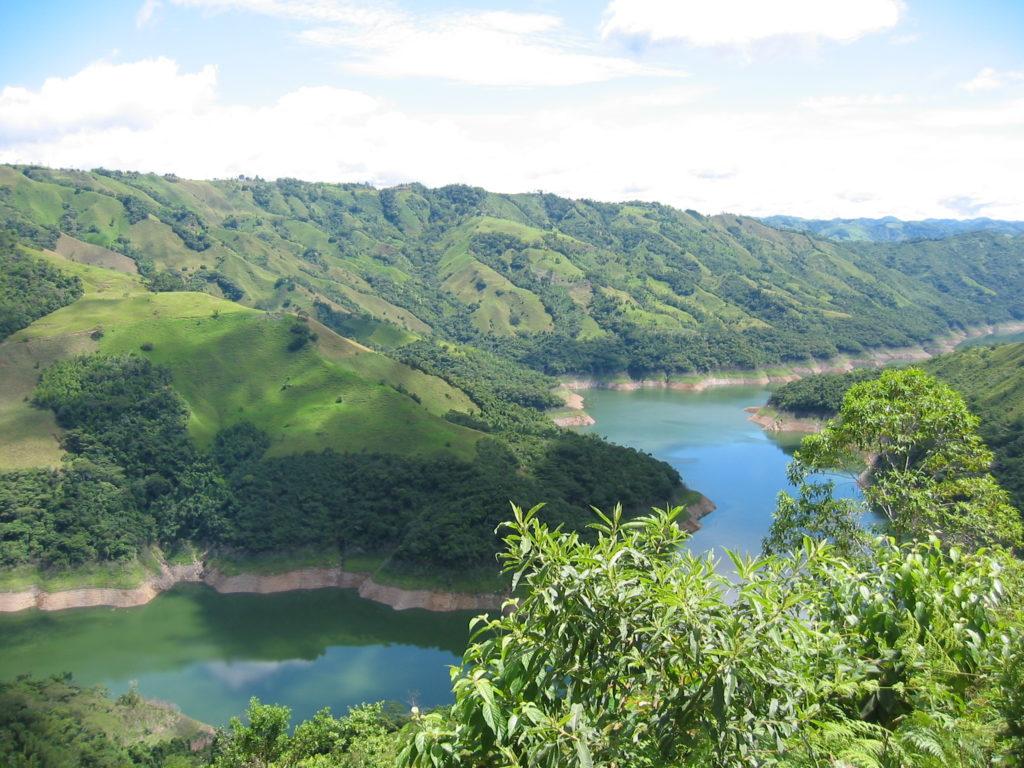 Bosque nativo alrededor de la represa Hidromiel en el departamento de Caldas. Foto: Guillermo Rico.
