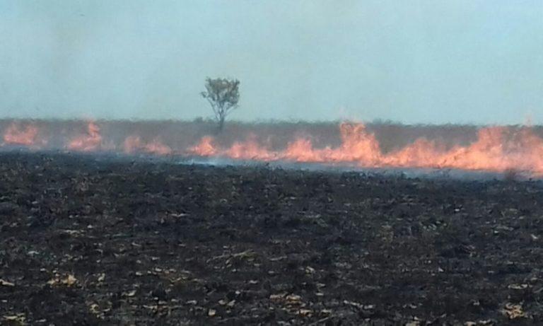 El Parque Nacional El Tuparro fue impactado por un incendio que se presentó desde el 27 de febrero hasta el 6 de marzo de 2018. Foto: Fuerza Aérea. Bomberos y Parque El Tuparro