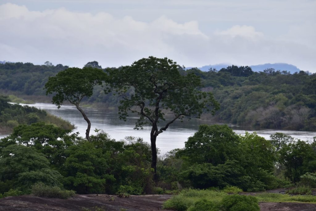 La cuenca del río Bita cuenta con un estado de conservación del 95 %. Foto: Ministerio de Ambiente de Colombia.