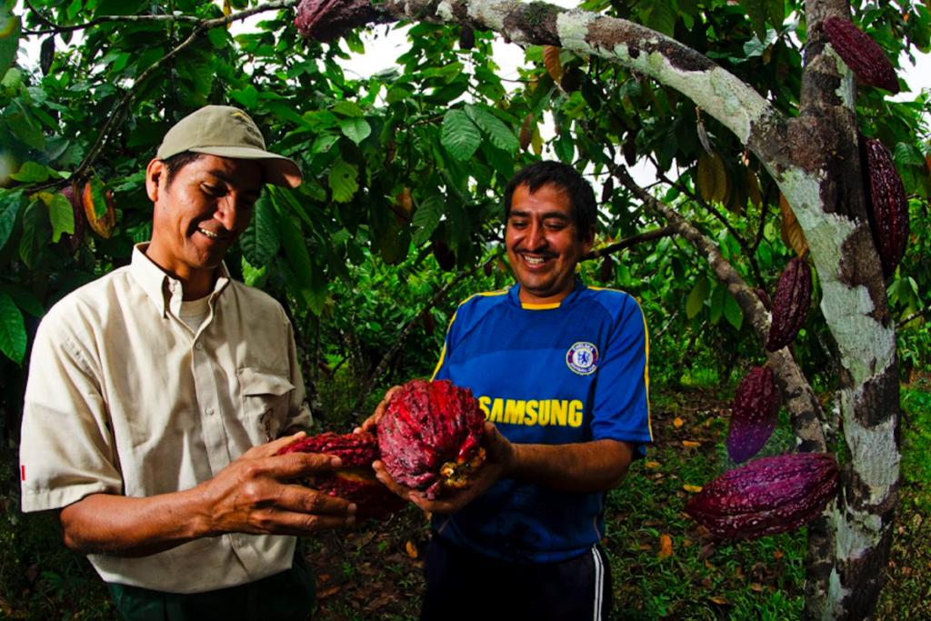 El Parque Nacional Río Abiseo ha conseguido como aliados para la conservación a los cacaoteros de San Martín. Crédito: Sernanp.
