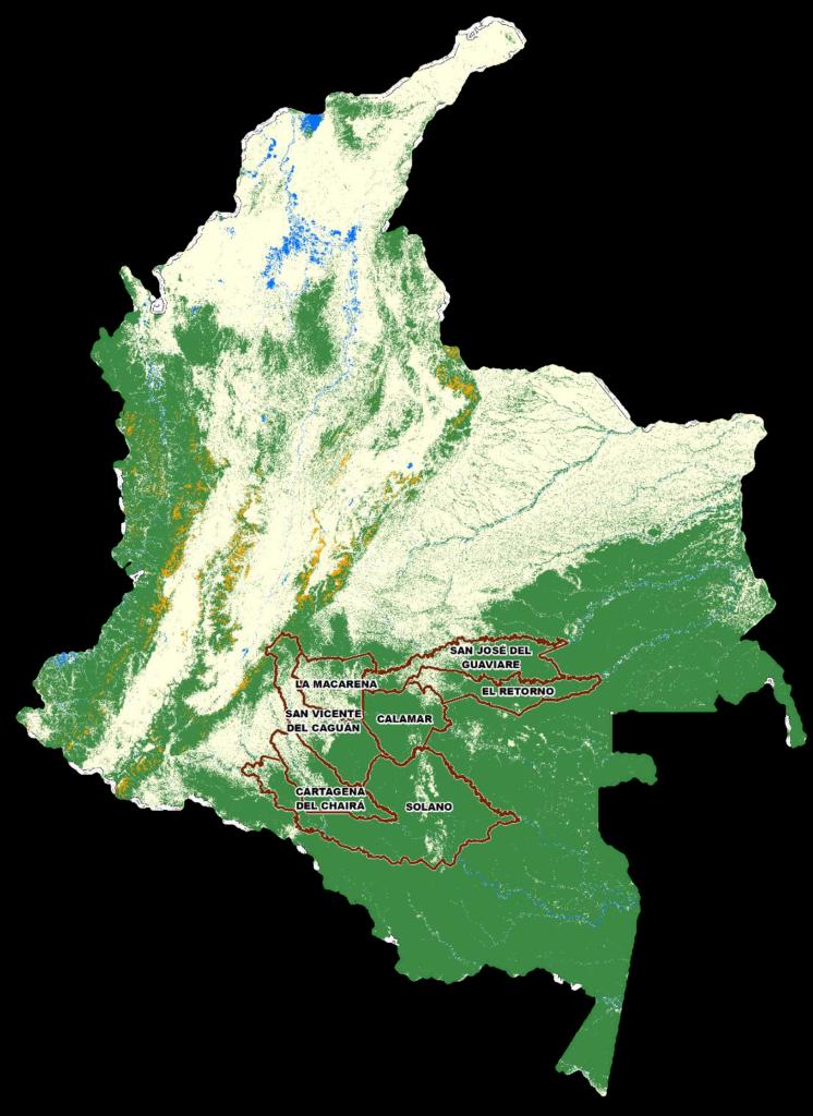 En solo 7 municipios se concentra el 49,1 % de la deforestación en Colombia. Foto: Ideam.