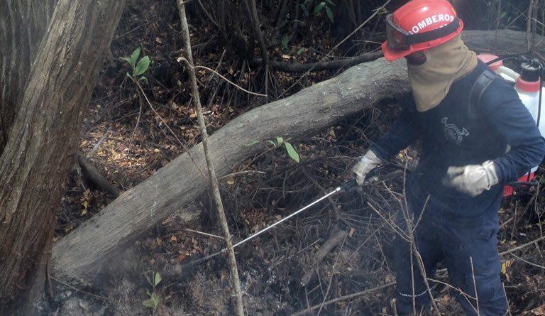 Así combaten el fuego en los manglares. Foto: Parques Nacionales Naturales de Colombia.