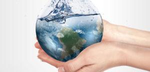 Fotografía: sustentabilidad.com