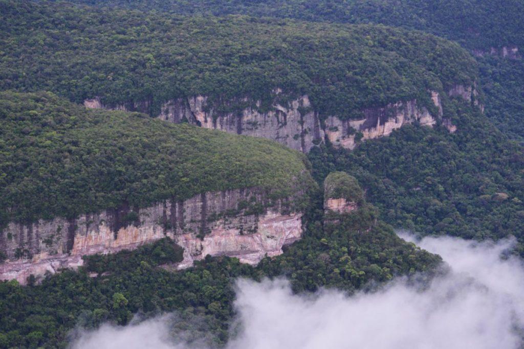 Mafias deforestan bosques en áreas protegidas para adueñarse de terrenos baldíos que pertenecen al Estado. Debido a esto y según cifras oficiales, Colombia habría perdido alrededor de 762 807 hectáreas. Foto: Fundación para la Conservación y el Desarrollo Sostenible (FCDS).