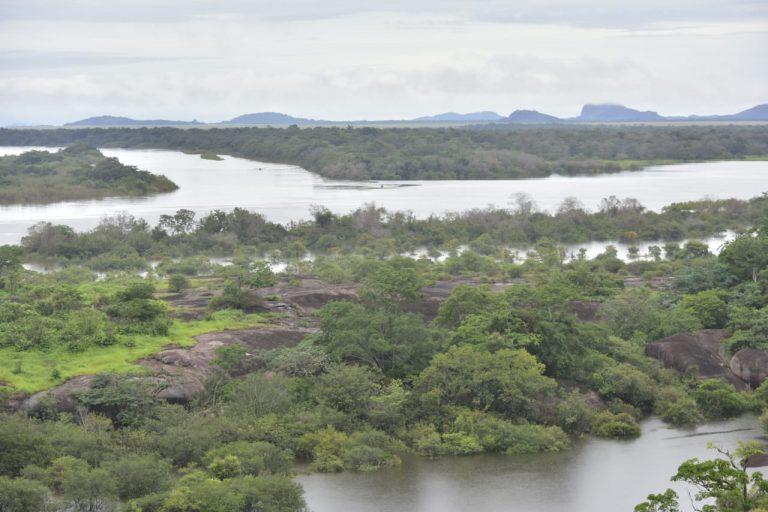 El 5 de junio el ministro de Ambiente Luis Gilberto Murillo anunció la protección del río Bita que tiene un recorrido de 710 kilómetros. Foto: Ministerio de Ambiente de Colombia.