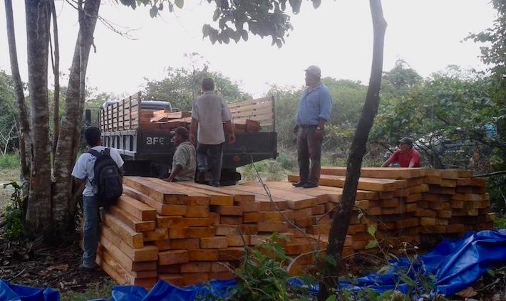 En el caso del Rosul, el informante de la Asociación Balám ha detectado estructuras delictivas bastante grandes que comienzan con los lugareños y que llegan hasta los puertos de Guatemala donde se trafican influencias. Foto: Asociación Balám.