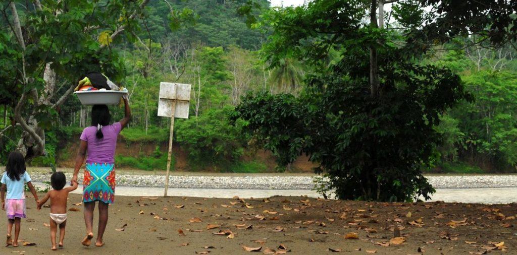 Todos los indicios de pueblos indígenas en aislamiento en Colombia se ubican en la Amazonía, en zonas muy proclives a los fenómenos de deforestación o en lugares con futura vocación minera. Foto: Juan Pablo Gutiérrez / ONIC