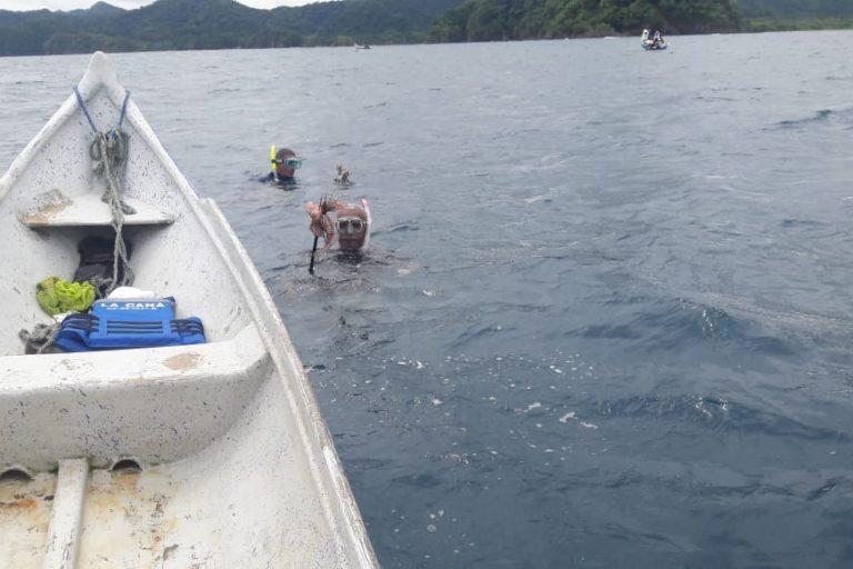 Los ejemplares de pez león se encontraron entre los 12 y los 15 metros. Foto: Parques Nacionales Naturales de Colombia.