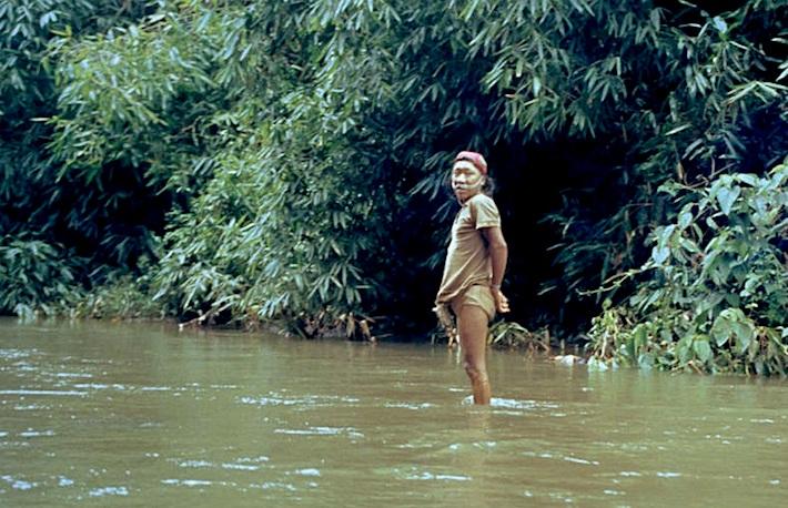 En medio de la selva peruana, habitan al menos 12 etnias de indígenas en aislamiento voluntario o contacto inicial. Prefieren el no contacto y la autodeterminación. Crédito: Survival.