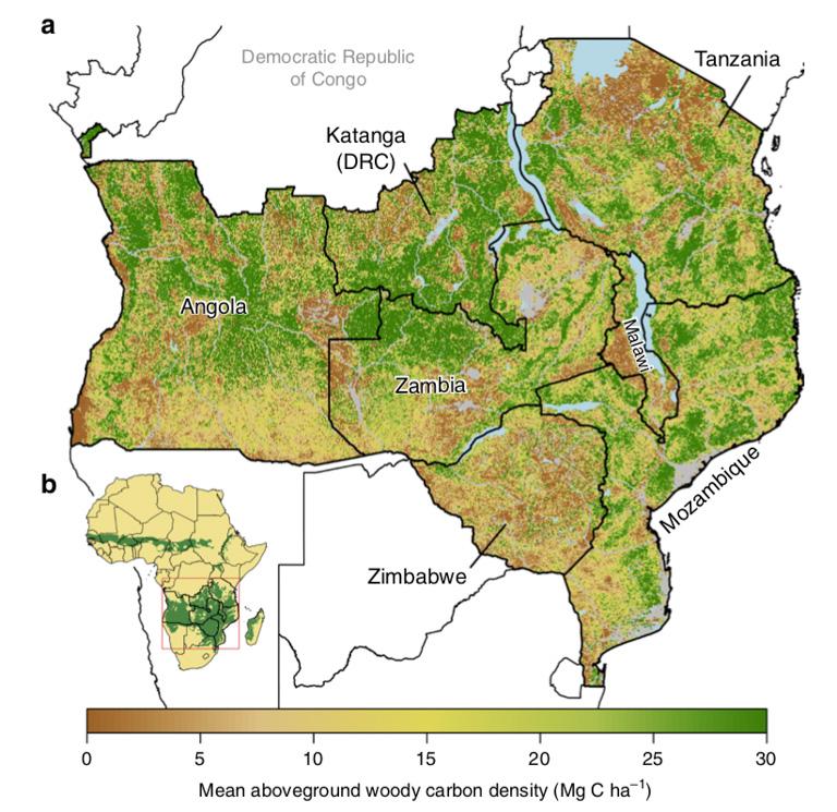 Reservas de carbono en las sabanas boscosas del sur de África. Imagen cortesía de McNicol et al., 2018.