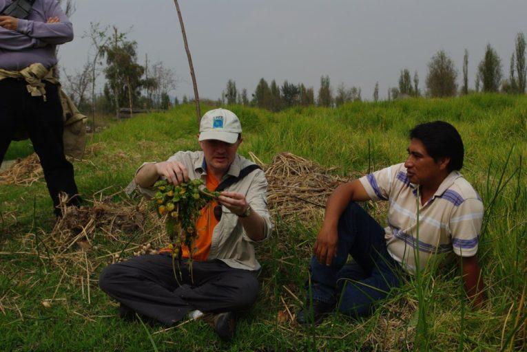 Xochimilco es un sistema socioecológico en donde la presencia del ser humano ha generado una gran influencia en el hábitat del ajolote. Foto de Luis Zambrano