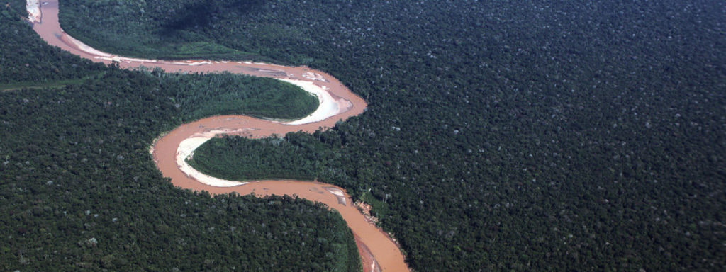 Aunque se reconocen las posibles contribuciones que los bosques pueden realizar para frenar el calentamiento, estas no suelen considerarse como una solución permanente al cambio climático. Foto: Rhett A. Butler / Mongabay