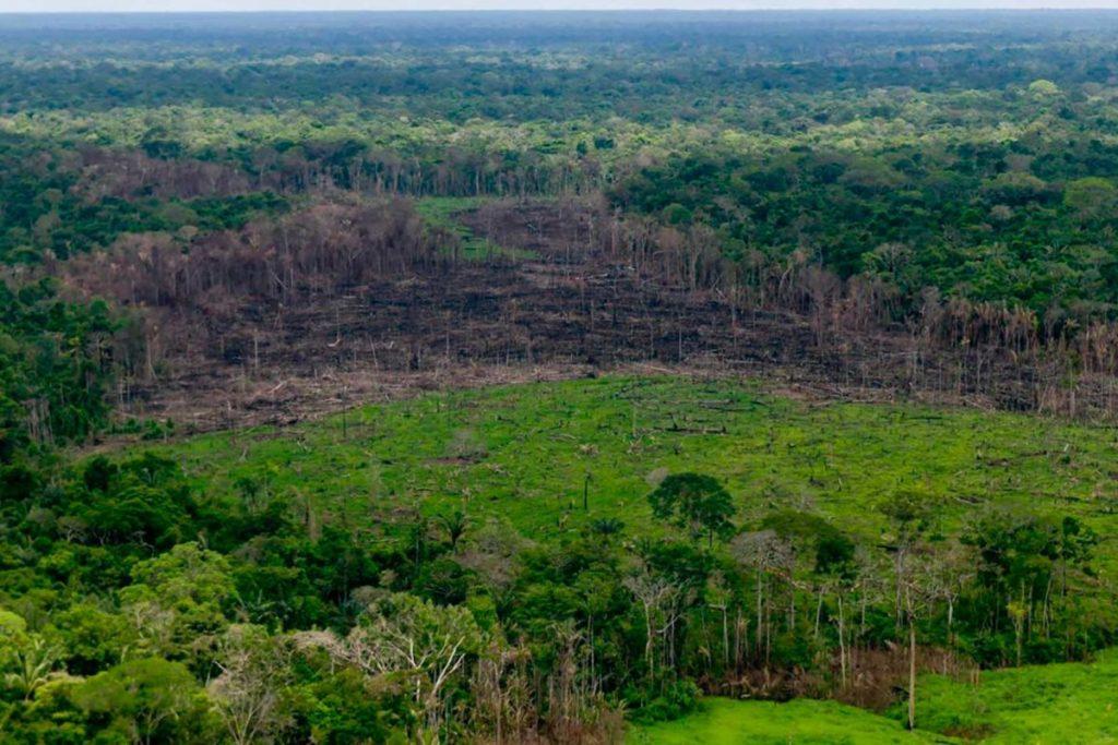 La deforestación se ha concentrado en el noroeste de la Amazonía Colombiana, en Parques Nacionales como Macarena, Tinigua, Picachos y Chiribiquete. Foto: Efraín Herrera – Presidencia de Colombia.