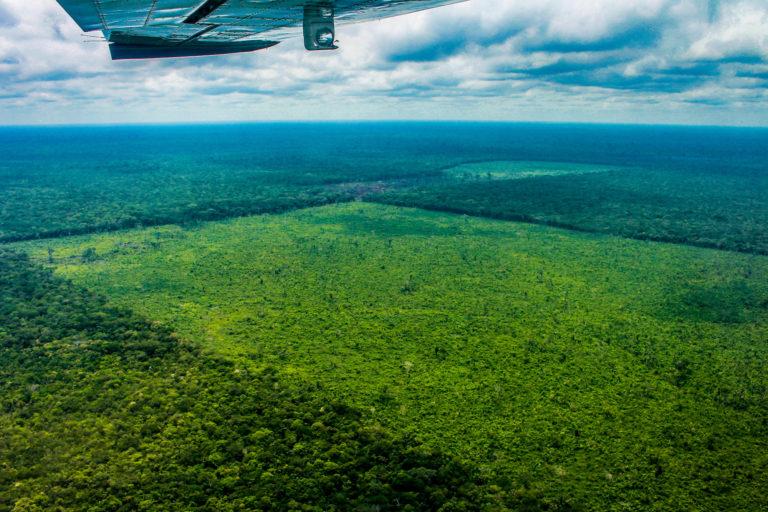 Cuadro A2 del Zoom A. Sobrevuelo en el Parque Nacional Chiribiquete. Foto: Fundación para la Conservación y el Desarrollo Sostenible (FCDS).