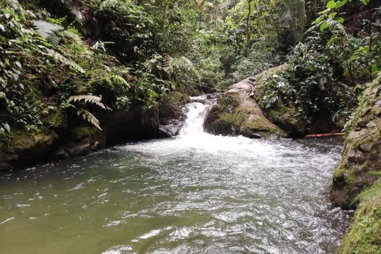 Río Quindío. Foto: Andrea Correa.