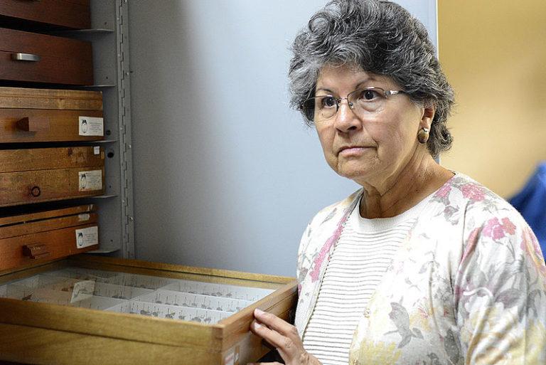 Guiomar Nates Parra fue una de las primeras académicas colombianas en interesarse por las abejas silvestres. Foto: Agencia de Noticias Universidad Nacional.