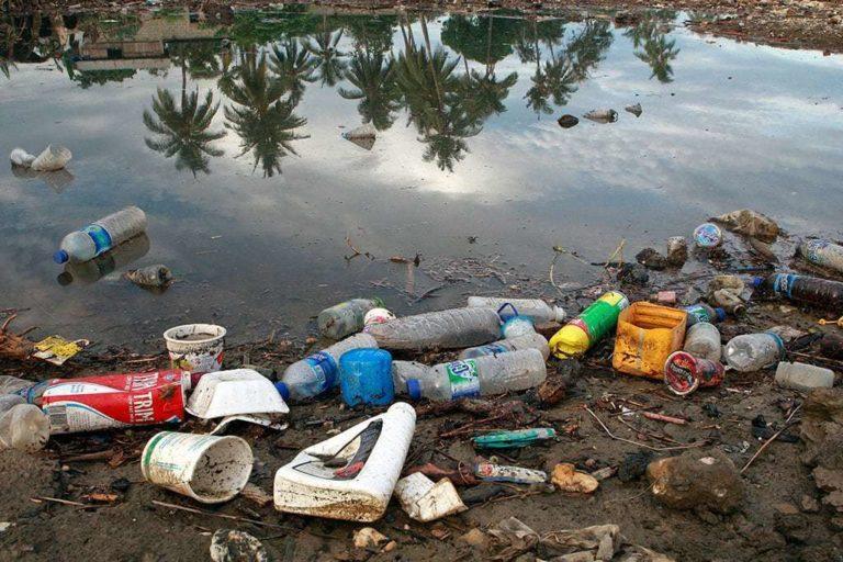 La basura plástica pone en riesgo la biodiversidad marina. Foto: Onu/Matine Perret