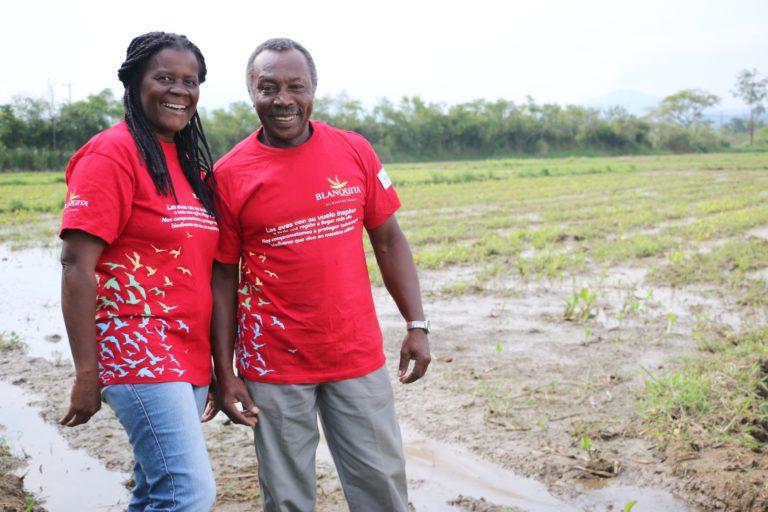 José Jarvi Bazán y Nelly Lucumí en el cultivo de arroz orgánico. Foto: Asociación Calidris.