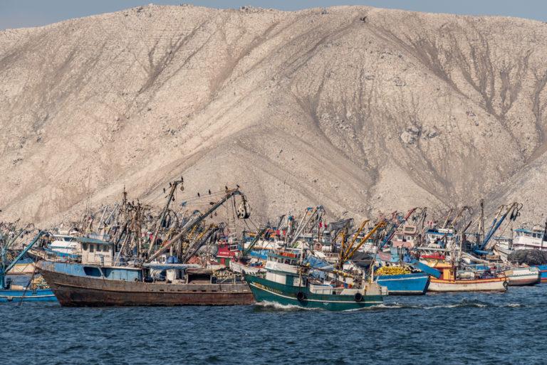 Embarcaciones de pesca artesanal en el Perú. Foto: Oceana-Andre Baertschi.