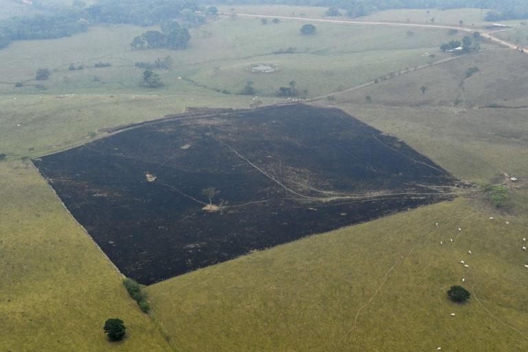 La quema de pasturas es común en las zonas previamente deforestadas. No se conoce el efecto en emisión de gases efecto invernadero. Foto: Jorge Contreras.