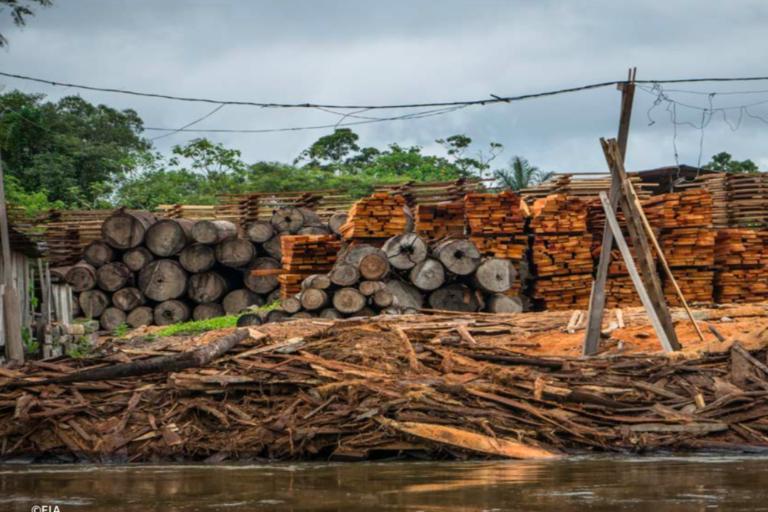 A ambos lados del río Putumayo se va recogiendo madera. Foto: EIA.