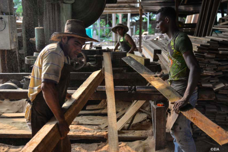Mucha madera ilegal de Perú se legaliza en Colombia. Foto: EIA.