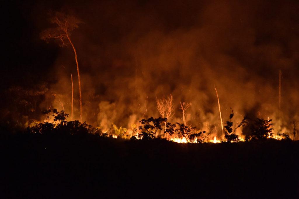 Incendio de vegetación en la Amazonía colombiana. Foto: Jorge Contreras.