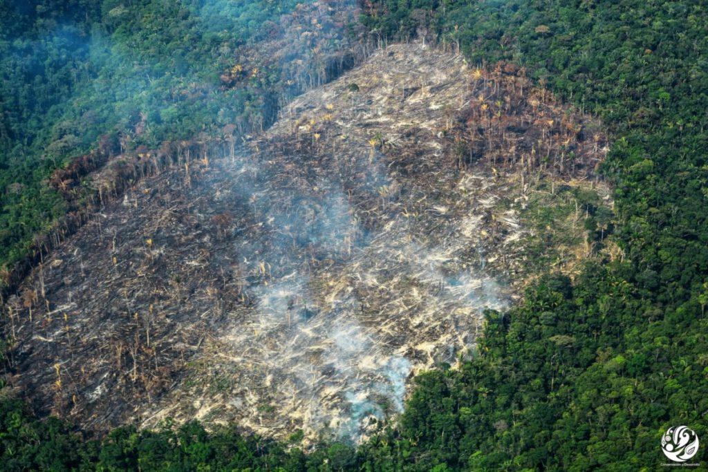 Las quemas en la Amazonía colombiana suelen darse entre enero y febrero. Foto: Fundación para la Conservación y el Desarrollo Sostenible (FCDS).