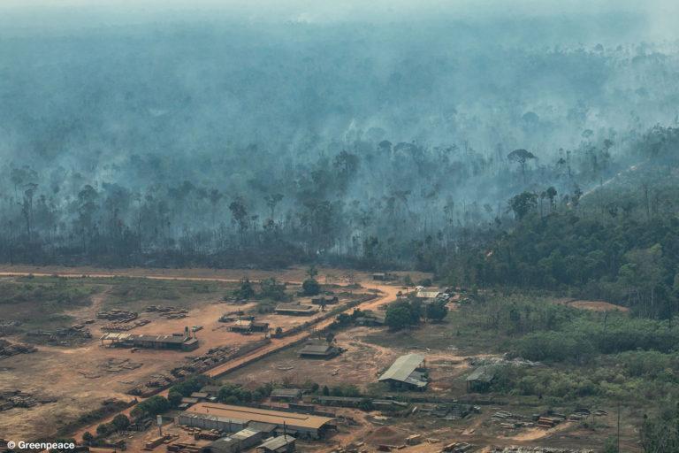 Vista aérea de áreas quemadas en la selva del Amazonas, en la ciudad de Colniza, en el estado de Mato Grosso. (Fotografía: Victor Moriyama / Greenpeace).
