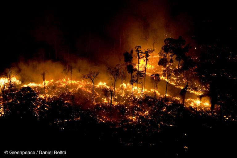 Hombre inicia una quema para ganar terreno para el ganado y cultivos. Esta foto fue tomada en agosto de 2008 en São Félix do Xingu, estado de Pará, Brasil. Imagen © Daniel Beltra / Greenpeace